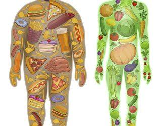 Basenreiche Lebensmittel einfach erklärt